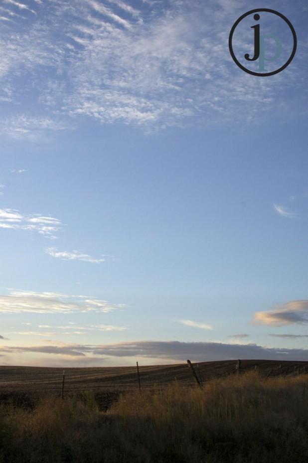 The Beautiful Blue Sky